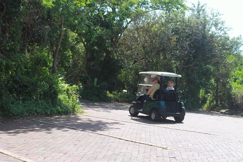 Golf cart and other equipment