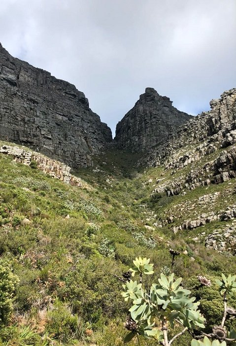 Corporate travel to Table mountain South Africa